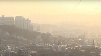Скриншот из видео 연합뉴스TV