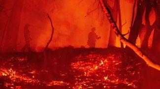 Фото из архива AFP