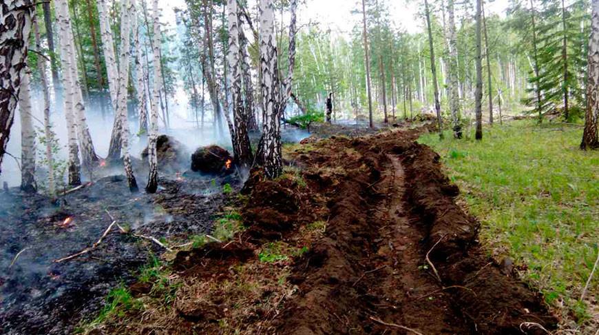 Дым от лесных пожаров накрыл 81 населенный пункт в Иркутской области