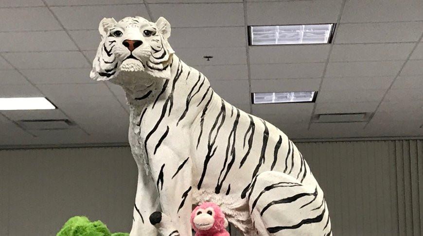 Белый тигр напугал водителя и тот сообщил об этом в полицию, животное забрали в участок
