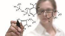 Почти 40% исследователей в белорусской академической науке - женщины