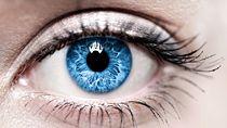 В Беларуси разработали новую технологию глазного протезирования с использованием 3D-модели