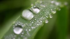 Какие новшества внесены в закон о государственной экологической экспертизе