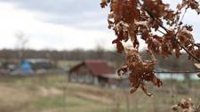 Домик в деревне за базовую: тонкости покупки пустующих и ветхих домов