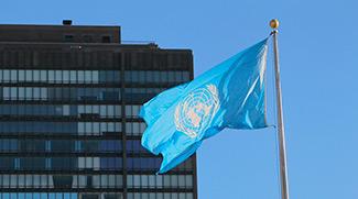 О назначении спецдокладчиком ООН и негативе от санкций в условиях пандемии