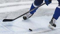 Хоккейный смотр на высоком уровне
