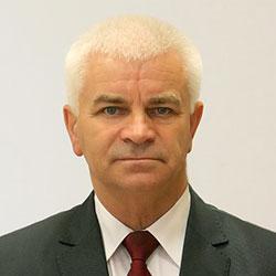 Виктор Гуминский
