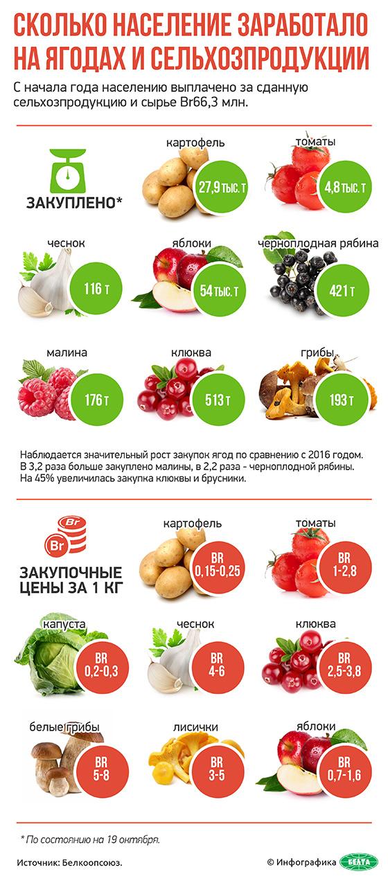 Сколько население заработало на ягодах и сельхозпродукции