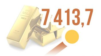 Золотовалютные резервы Беларуси с начала года выросли на 50,5%