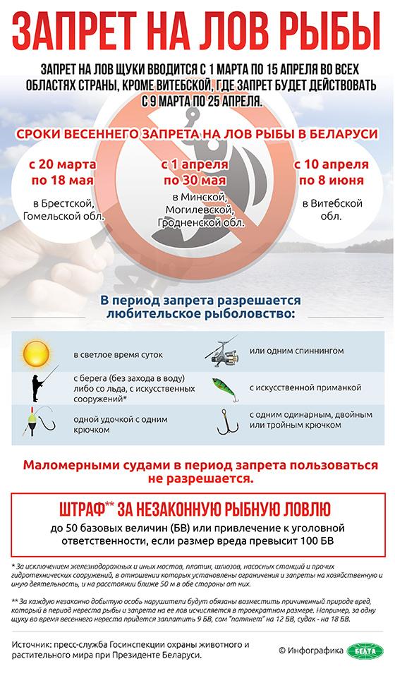 Жилищные программы на 2019 год москва