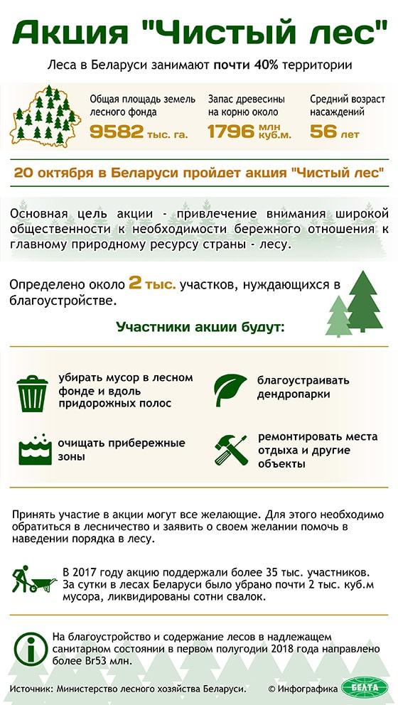 """Акция """"Чистый лес"""""""