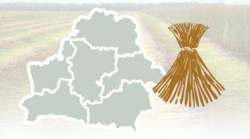 Льнопроизводство в Беларуси