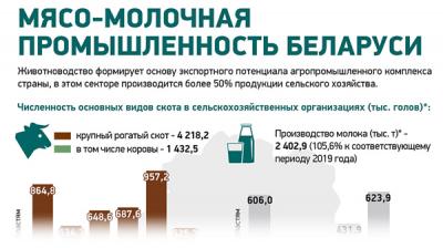 Мясо-молочная промышленность Беларуси