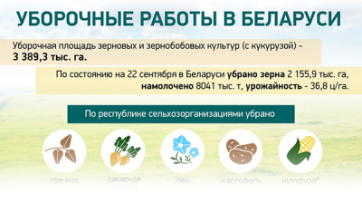 Уборочные работы в Беларуси