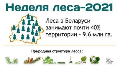 Неделя леса - 2021