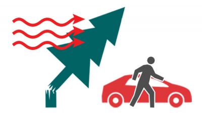 Сильный ветер: как действовать в случае возникновения экстремальной ситуации