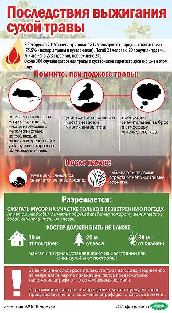 Последствия выжигания сухой травы