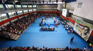 Боксеры из восьми стран выступают на международном турнире памяти Владимира Ботвинника