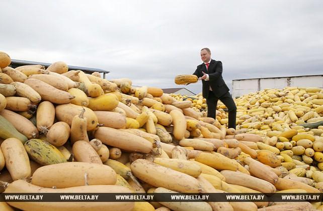 Быховский консервно-овощесушильный завод экспортирует продукцию в 19 стран