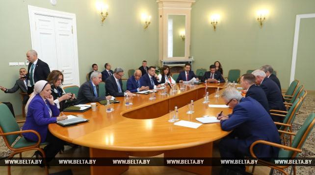 Встреча Мясниковича с председателем Парламента Египта