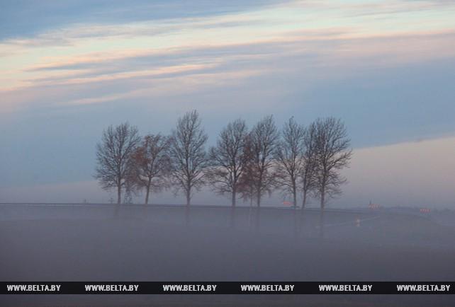 Утро под Витебском