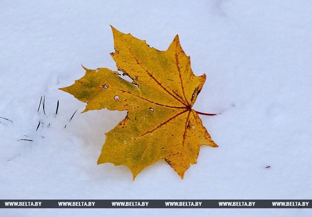 Первый снег в Витебске