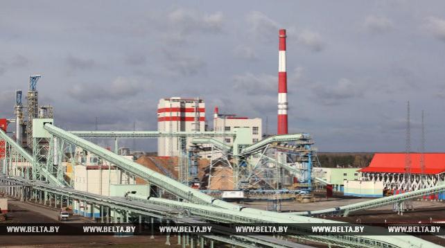 Завод по производству сульфатной беленой целлюлозы в Светлогорске введут в строй в ноябре
