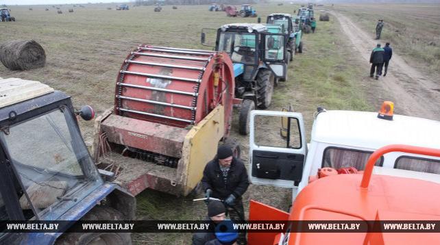 Уборка льна в Гомельской области ведется на последних гектарах