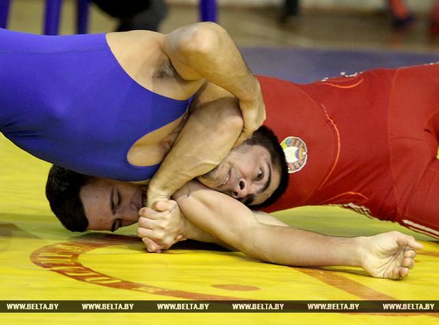 Республиканский турнир по вольной борьбе памяти Ивана Станкевича прошел в Витебске