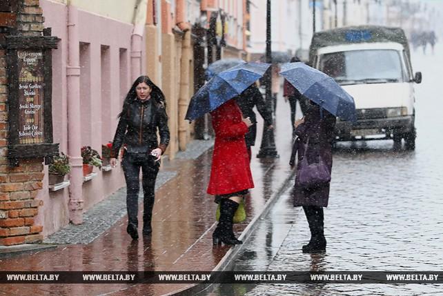 В Гродно пошел первый снег
