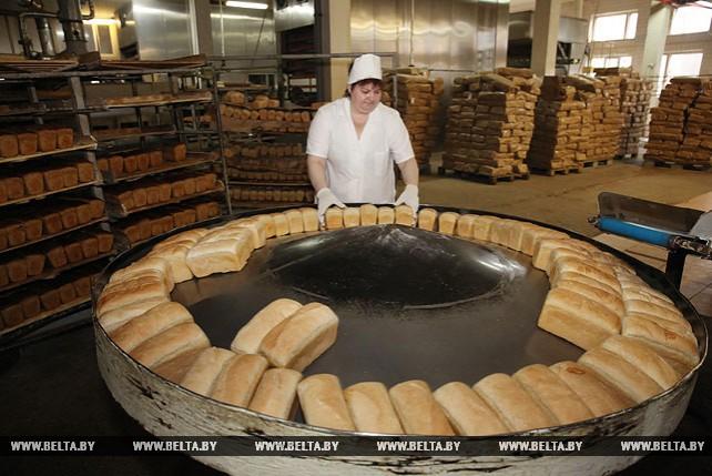 Производство сухаря армейского наладили на Новополоцком хлебозаводе