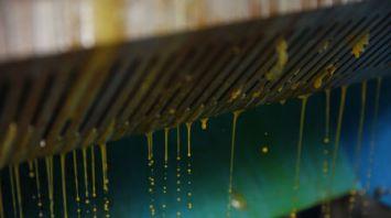 """В СПК """"Гигант"""" запустили новую линию по производству рапсового масла"""