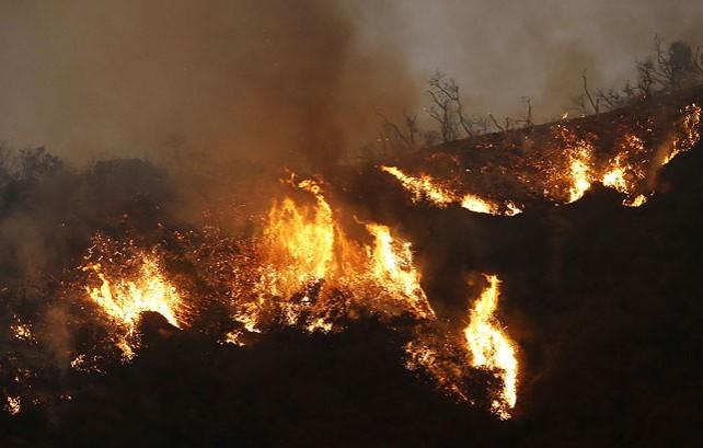 Лесные пожары продолжаются в Калифорнии