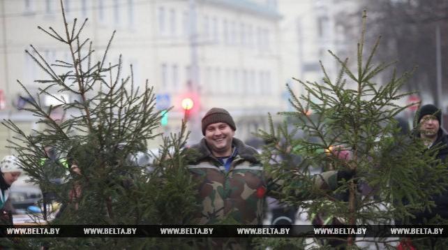 В Гомеле открылись новогодние ярмарки