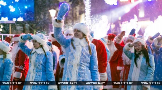 В Бресте зажгли главную новогоднюю елку города