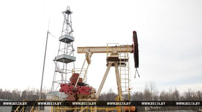 В Беларуси открыты два месторождения нефти