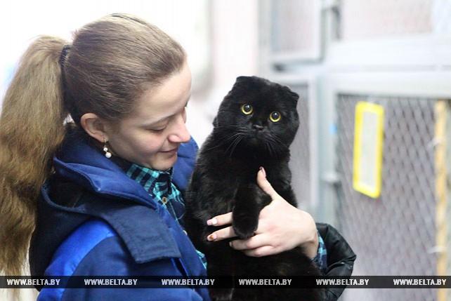 В Минске работает первая государственная гостиница для животных