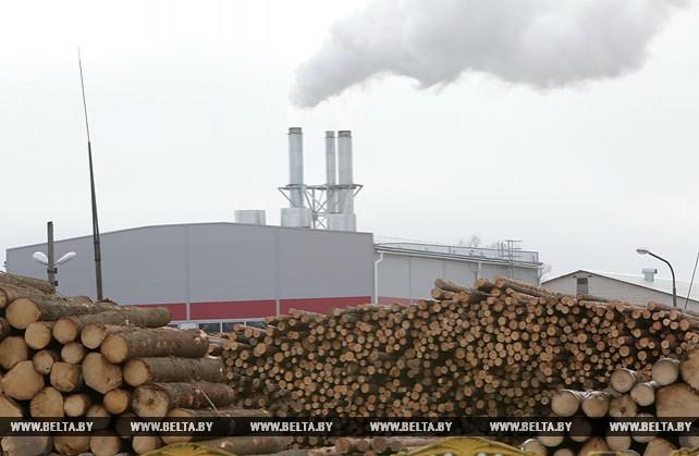 Организации Минлесхоза заготовили в 2017 году 17,5 млн куб.м древесины