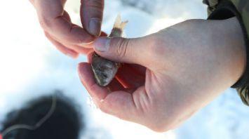 Зимняя рыбалка под Минском