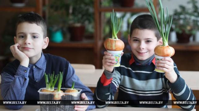 Ельская вспомогательная школа-интернат - лучшая в Гомельской области