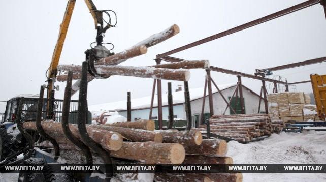 """Деревообрабатывающий цех """"Вендорож"""" Могилевского лесхоза имеет полный цикл переработки"""