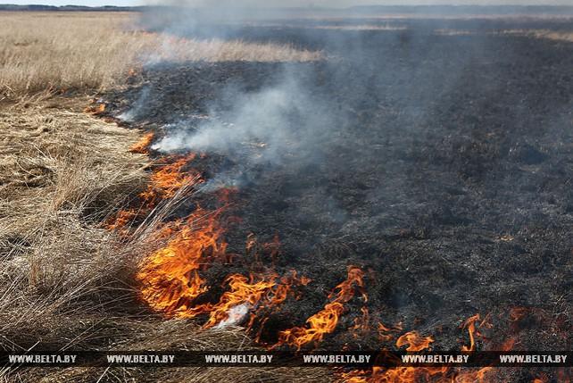 В Ивьевском районе произошли возгорания травы