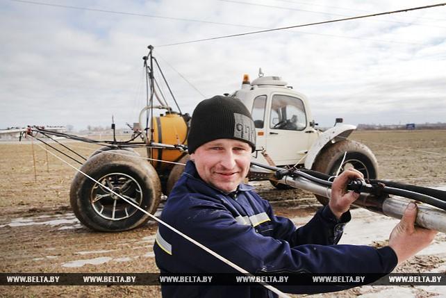 В Могилевском районе идет подсев клевера и подкормка трав и озимых зерновых