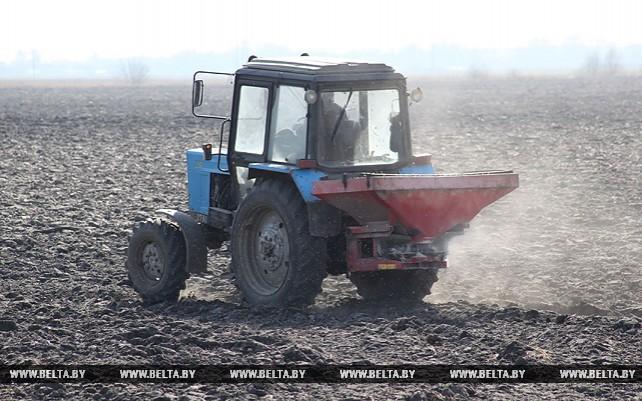 """В ОАО """"Туровщина"""" завершают подготовку почвы под сев ультрараннего сорта зеленого горошка"""