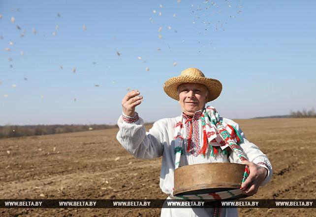 """Праздник """"Засевки"""" дал старт посевной кампании в Могилевской области"""