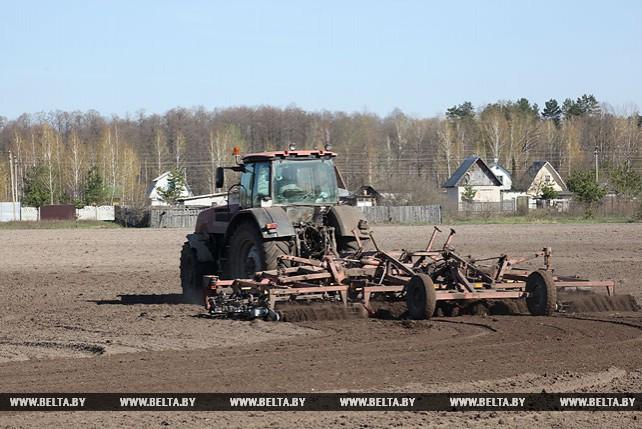 Сев кукурузы идет в Речицком районе