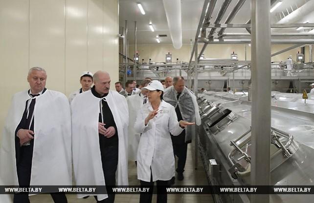 Лукашенко посетил Туровский молочный комбинат