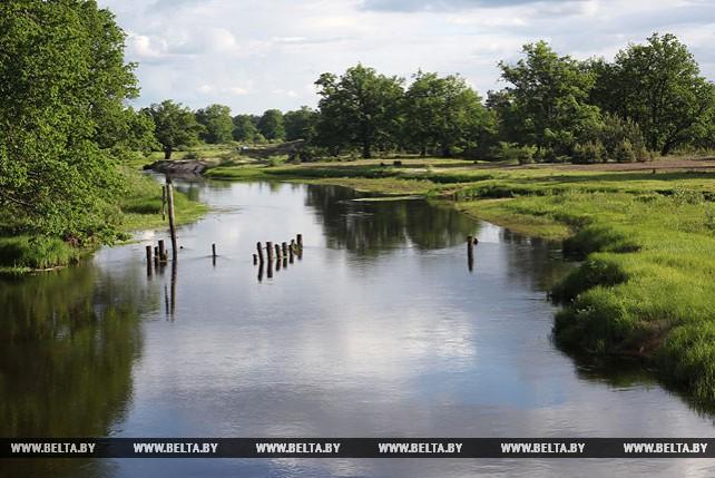 Убортское Полесье - жемчужина ландшафта Гомельской области