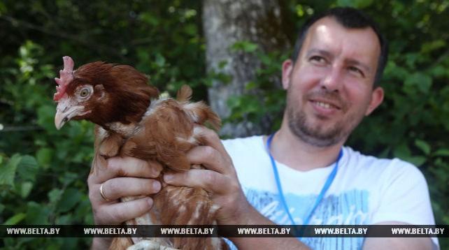 Куриные бега и Beer-старты впервые прошли на Августовском канале
