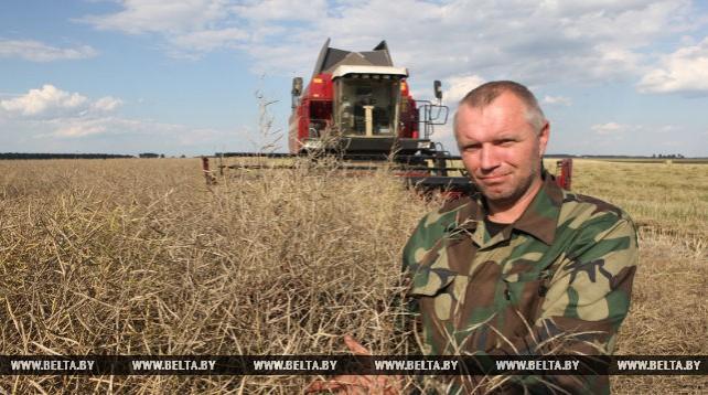 В Гомельской области приступили к уборке рапса